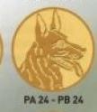 Căine PA24