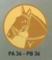 Cal PA36