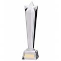 Trofeu din cristal 2